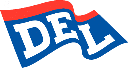 Deutsche Eishockey Liga Logo 19941 - 1994 - 2000